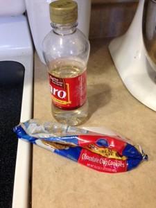 greatamericancookieexperiment